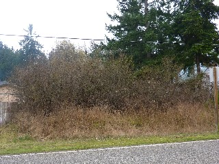 Picture of Point Roberts Parcel Number 415335-265228
